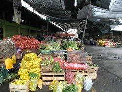 Vega Poniente - Mercado -  Santiago