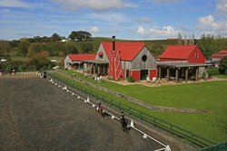The Stables Restaurant Matakana