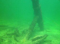 Explorer Diving