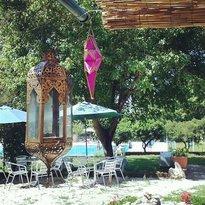 Bio Bar Selva Grande