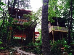Rivers Edge Treehouse Resort