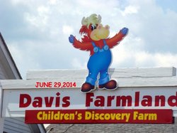 Davis' Farmland & Mega Maze