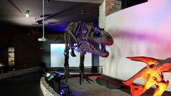 Haenam Dinosaur Museum