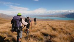 Hiking New Zealand - Day Tours