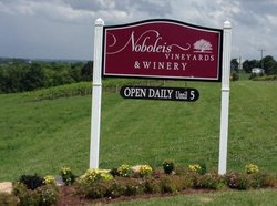 ‪Noboleis Vineyard‬