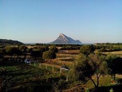 Vista dal tavolo: isola di Tavolara