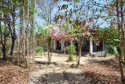 Wildernest bungalow