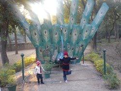 ChhattBir Zoo