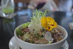 The Tempestuous Salad