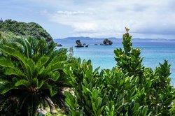 Tsukenjima Island