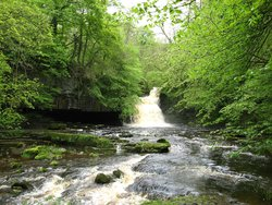 ‪West Burton Falls‬