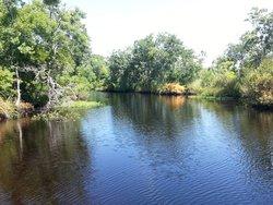 Ringhaver Park/Ortega River Nature Preserve