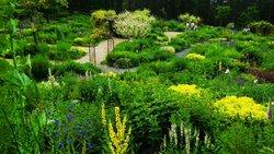 Garden of Wind