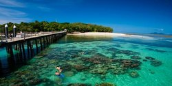 Green Island Resort Diving & Boat Snorkelling Trips