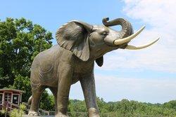Jumbo The Elephant Monument