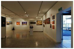 Changing Perceptions an exhibition by regional artist Milynda Rogers
