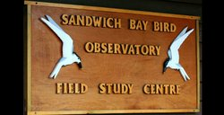 ‪Sandwich Bay Bird Observatory‬