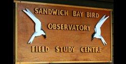 Sandwich Bay Bird Observatory