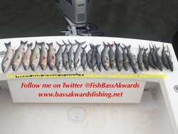 Bass Akwards Fishing Charters