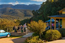 Ringer Reef Winery