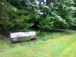 Arboretet