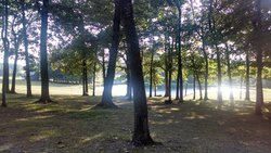 Cane Creek Campground