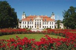 Zamoyski Palace Museum