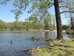 Lippman Park