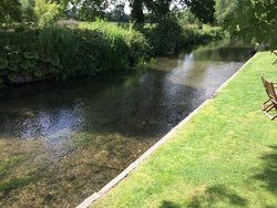 Chalk stream at the Prince Leopold, Upton Lovell