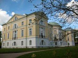 Mezotne Palace