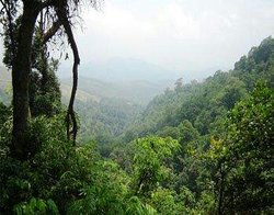 "Malom - ""The coorg of Kerala"""