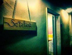 Scialae