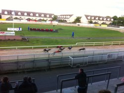 Harold's Cross Greyhound Stadium