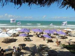 4 20 Beach Bar
