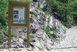 Sentiero Geologico Canzo - Terz'Aple
