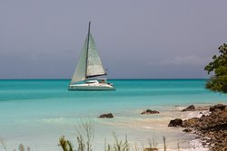 Tropical Catamaran Sailing Day Tours