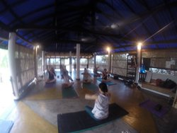 Wave Flow Yoga