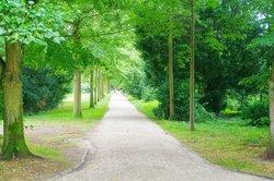 Landgraves' Castle & Castle Park