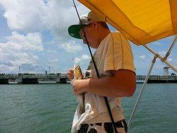 Dolphin Marine Rentals