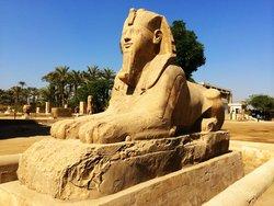 孟菲斯及其墓地金字塔