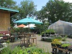 Let It Grow Coffee Roasters & Garden Cafe