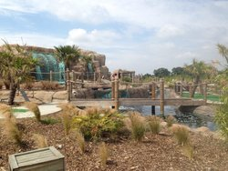 Jungle Island Adventure Golf