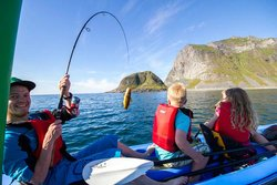 Experience Lofoten Islands