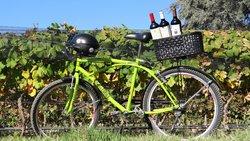 자전거 투어