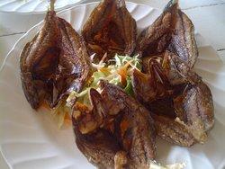 ร้านอาหาร ปลาทู