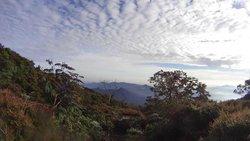 Mount Gede Pangrango National Park