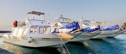 Laser Capri Boat Tours