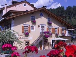 Hotel Salvanel