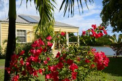 Antigua's Yepton Estate Cottages