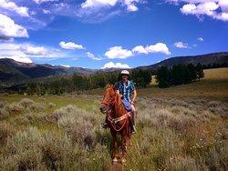 Jake's Horses